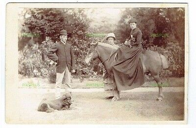 Old Cabinet Photograph Young Lady In Riding Habit On Pony With Puppy Dog On Lap