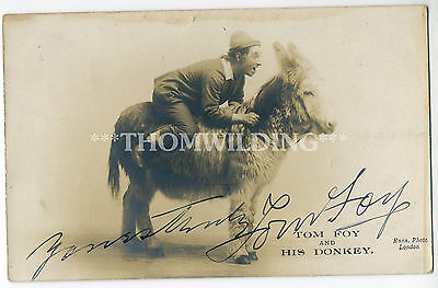 TOM FOY 'Yorkshire Lad' DONKEY -  MUSIC HALL Theatre PANTO Ink Signed AUTOGRAPH