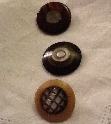 Antique Mixed Buttons Shell And Mother Of Pearl