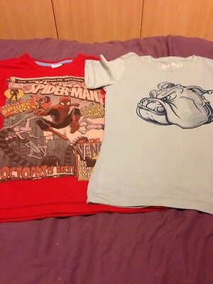 2 Boys T Shirts Aged 5/6 Years