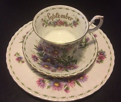 Vintage Royal Albert Bone China Cup Saucer Plate September Michaelmas Daisy