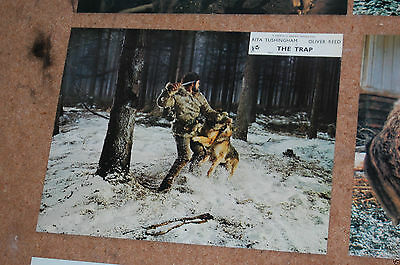 Oliver Reed - The Trap - Uk Foh Lobby Card #3