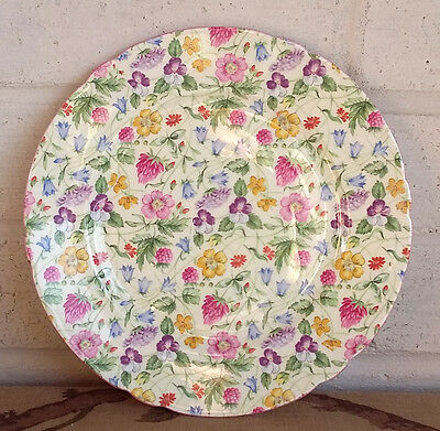"Stunning Vintage Shelley Countryside Floral Chintz Bone China 8.5"" Salad Plate"