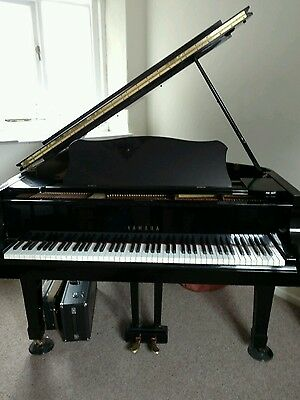 Beautiful Yamaha Grand piano C3 Bargain price!