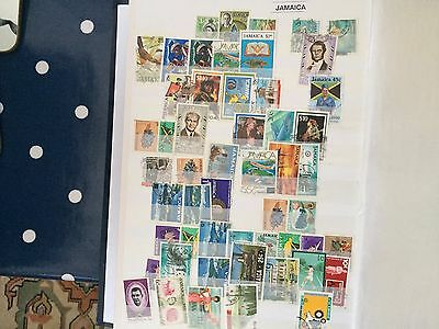 Big stockbook with British commonwealth sorted by country, massive lot & value