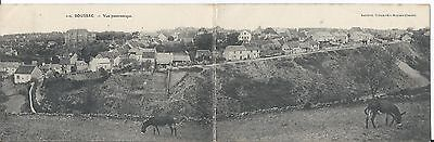 CPA - DOUBLE - BOUSSAC (23) Vue panoramique - ANIMEE