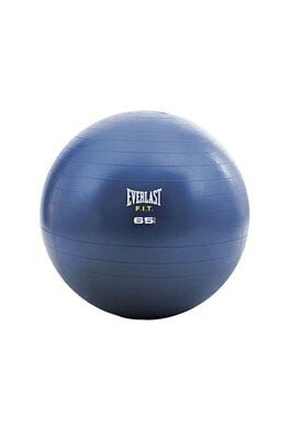 Everlast 65cm Core Strength Ball Fitball Training Equipment Silver