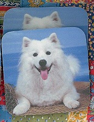 SAMOYED Rubber Backed Coasters #0933