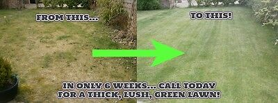 Business Opportunity -  Lawn Care Business