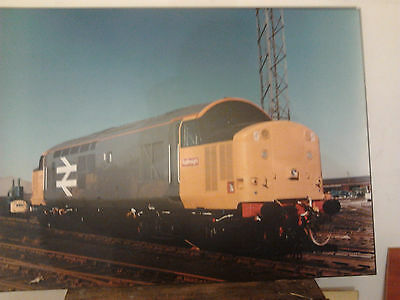 Class 37  Diesel picture