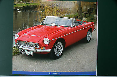 MGC Roadster Picture