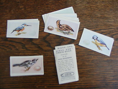 Junior Service Sweet Cigarettes Birds And Their Young Full Set Of 25 Cards