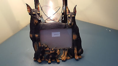 Doberman Pinscher Dogs Picture Frame New In Box Puppy