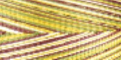 Cotton Variegated Colors 700 Yards-Corn Field 036771766906