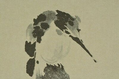 Hanging Scroll kingfisher Japanese Painting Japan Picture Antique Art ink b003