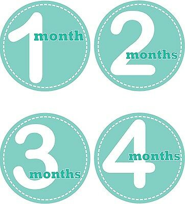 Personalised Monthly Baby Stickers, Milestone Stickers, Baby Shower Gift_G005