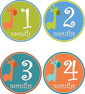 Personalised Monthly Baby Stickers, Milestone Stickers, Baby Shower Gift_B013