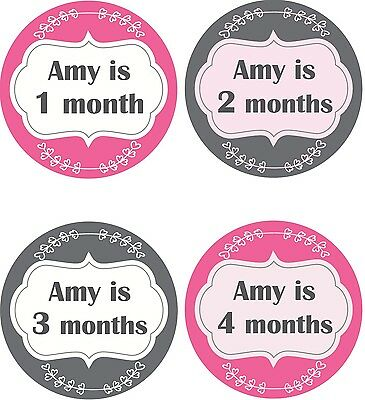 Personalised Monthly Baby Stickers, Milestone Stickers, Baby Shower Gift_G009