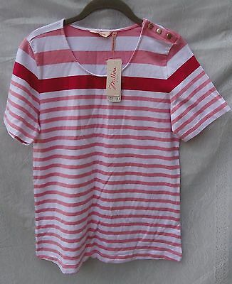 Ladies/millers/brand New/casual Stripe Knit Top/cotton/size 14
