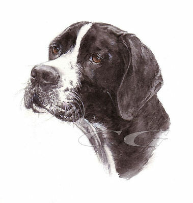 POINTER No6.       3 Blank Dog greeting cards by Christine Groves