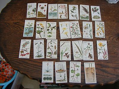 John Players Cigarette Cards Struggle For Existencew  1923 Full Set Of 25