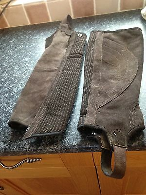 Dublin Large Suede Chaps Gaiters Brown