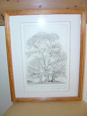 Piers Browne - Original Artists Proof of 'Three Sycamores'