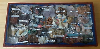 geological collection specimens rocks minerals fossils #6