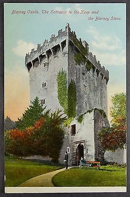 Ireland Blarney Castle Entrance to Keep Kissing Stone Antique Postcard b344