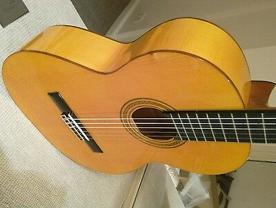 Flamenco Classical Guitars-Model Alameda, body: sycamore; Top: solid spruce