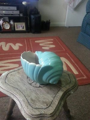 Poole pottery Conch shell