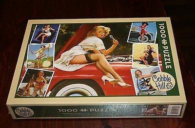 Roadaside Attractions Cobble Hill Jigsaw Puzzle 1000 Piece NEW Pinups