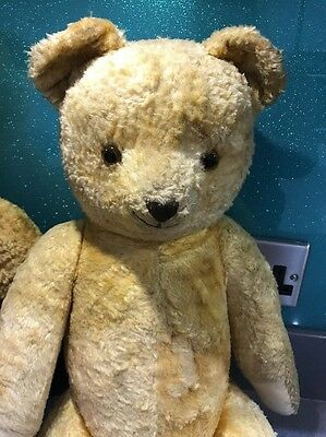 Two Antique Bears In Search Of New Home