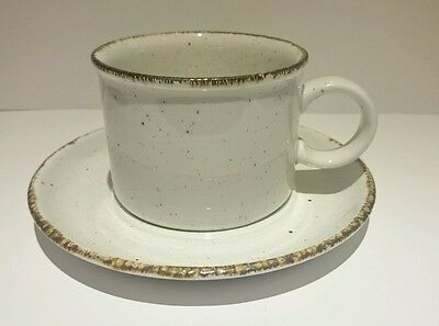 Midwinter Stonehenge Earth Cup and Saucer