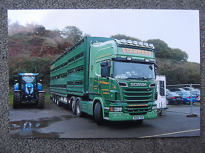 Stampers Scania Livestock Truck Photo