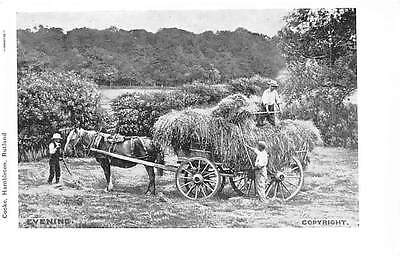 England Rural Scene, Evening Countryside, Hay Carriage, Cooke Hambleton Rutland
