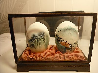 vintage hand painter eggs in a glass display  box
