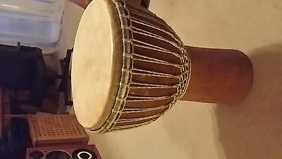 Djembe. aftican goat skin drum tuned