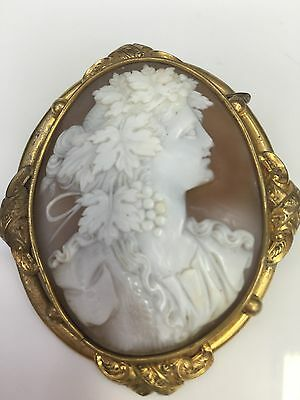 Victorian Pinchbeck Brooch Shell Cameo