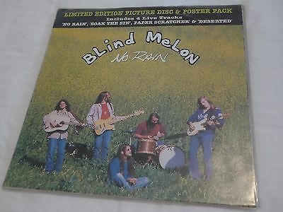"""Blind Melon Limited Edition Picture Disc 12"""""""