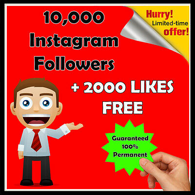 10,000 Instagram Follower +2000 FREE Like | HQ | 5Hr Delivery | SEO Marketing