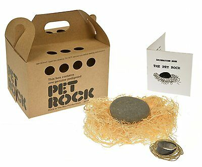 Rockinthebox Pet Rock with Walking Leash Kraft