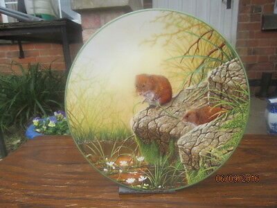 Royal Doulton Collectors Plate FORAGING BANK VOLES By W G Rollinson 1988