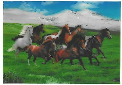 Horses 3D Lenticular raster Holographic Stereoscopic Picture Wall Art