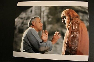 Beneath The Planet Of The Apes - Maurice Evans - 10X8 Photo #2