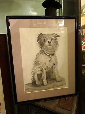 Nice Pencil & Wash Picture Drawing of a Lovely Yorkshire Terrier Signed Framed