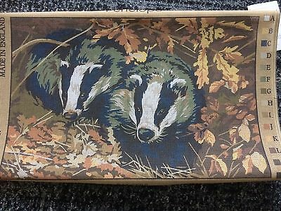 Badgers Tapestry canvas. No yarn included