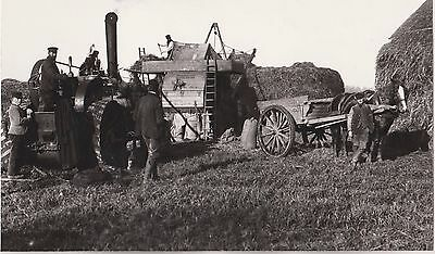 Farming Scene - Traction Engine - Horse And Cart - Photo 19