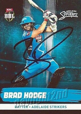 ✺Signed✺ 2016 2017 ADELAIDE STRIKERS Cricket Card BRAD HODGE Big Bash League