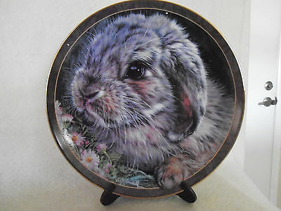 """Bradford Exchange """"Miss Daisy"""" Bunny Tales Collection 1998 #355"""